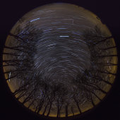Star Trails, Salisbury Plain