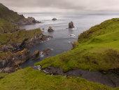 Hermaness coast, Shetland