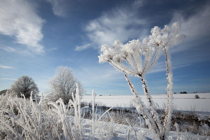 Hoar frost, Avebury