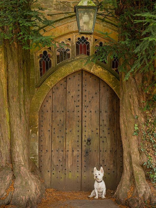 Yew tree door, St Edward's Church