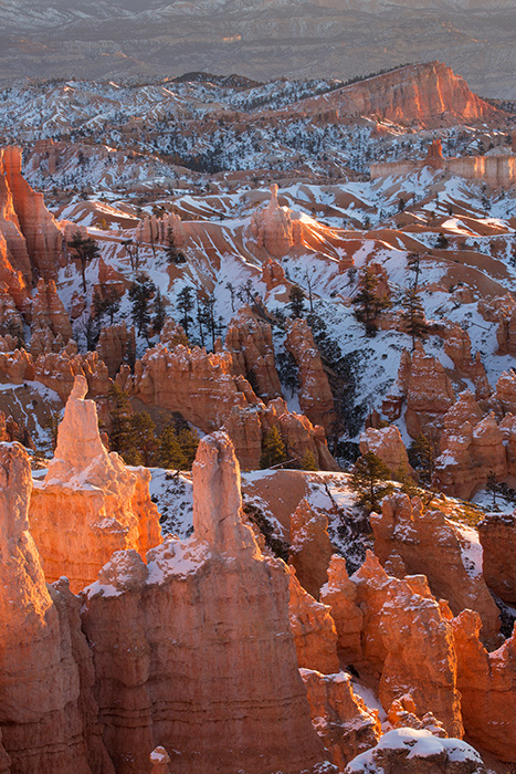 Hoodoos at dawn
