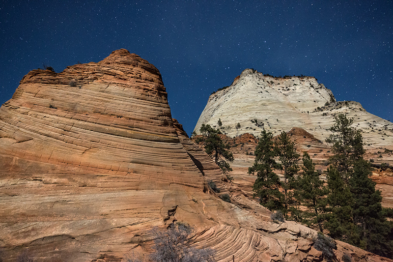 Zion plateau by moonlight