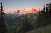 Sunrise, Mount Rainier