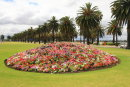 A garden in Perth