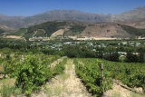 Dieu Donne and the Franschhoek Valley