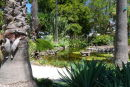 Botanic garden, Williamstown
