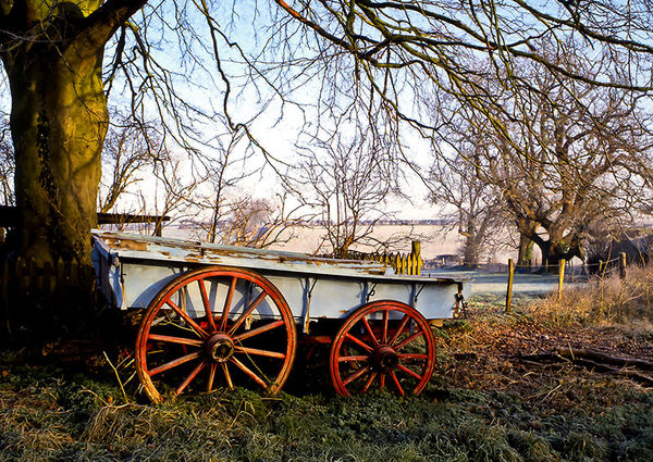 Farm Cart in Winter