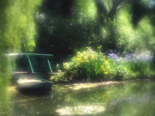 In Monet's Water Garden