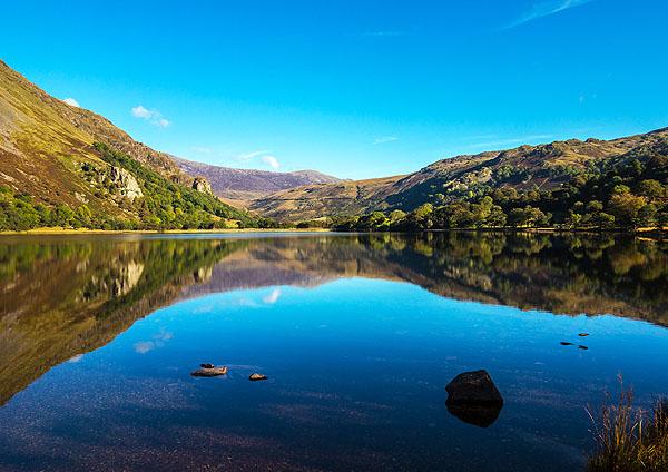 Llyn Gwynant Reflections