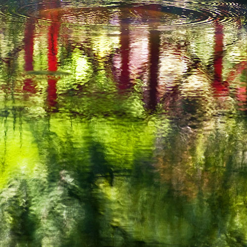 Reflections_Streamside