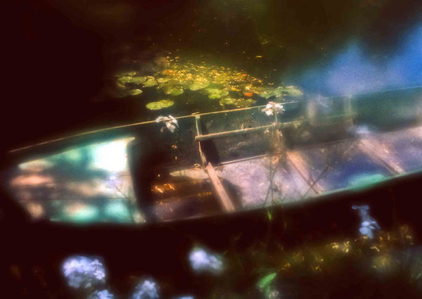 The Boat, Giverny Water Garden