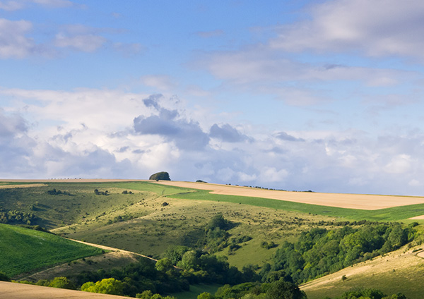 Win Green and the Landscape of Cranborne Chase