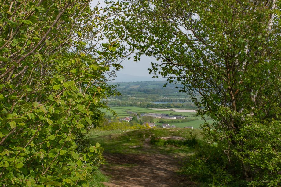 Warton Crag - The Path Back Down