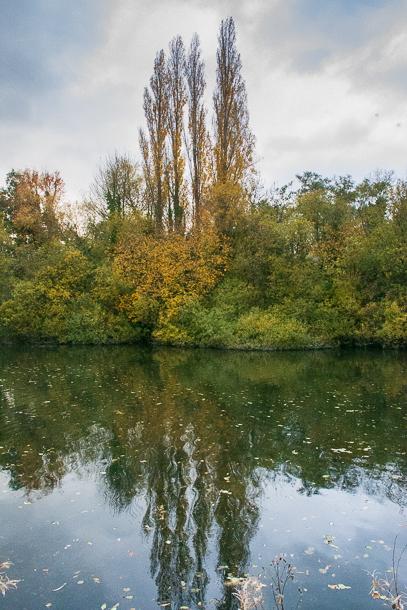 Autumn at Black Dam Ponds