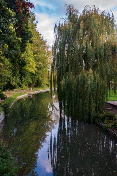 The Basingstoke Canal near Dogmersfield