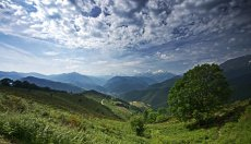 Col d' Aspin June 2014 008