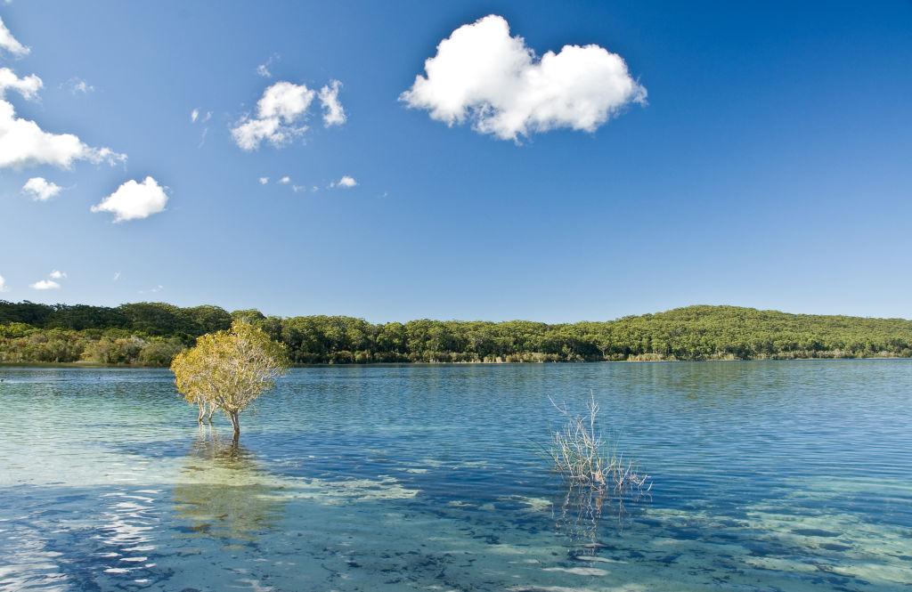 The Strange Lake