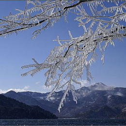Ice Branches. Lake Chuzenji. Japan.
