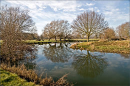 Reflections. River Stour. Suffolk.