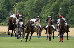The Polo Match.