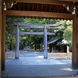 Shinto Temple Tokyo