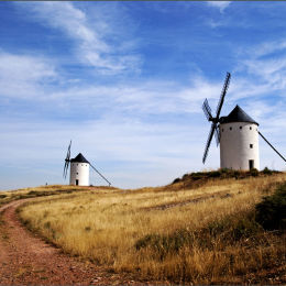 Windmill's Of La Mancha.
