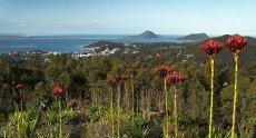Nelson Bay September 2014 079