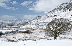 Snowdonia  Spring