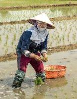 Vietnam March 2016. 055