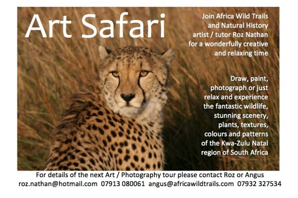 Art Safari Flyer 2019