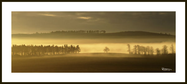 Eden Mist