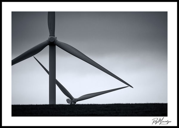 Windseekers