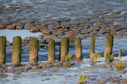 Low tide, Snettisham