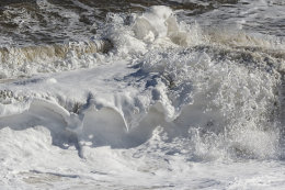 Foam covered breaking waves