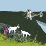GOATS IN THE GULLY, BRISTOL RM70