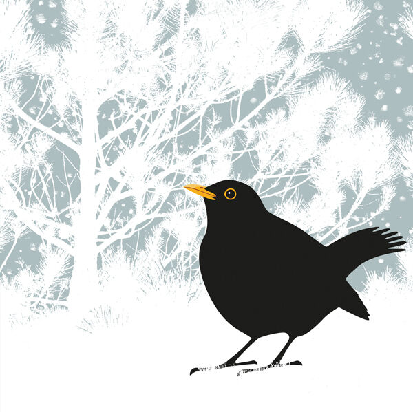 BLACKBIRD AND PINE RM082
