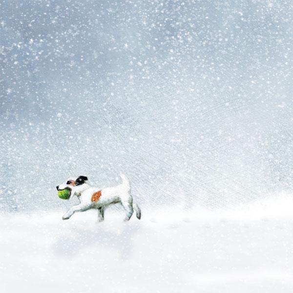 LAST THROW IN THE SNOW RM029