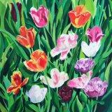 Tulip Square (card & print)