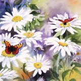 Daisies & Butterflies (card & print)