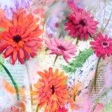 Gerbera collage (card)
