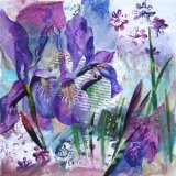 Purple iris Collage