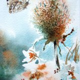 Teasel and butterfly (card)