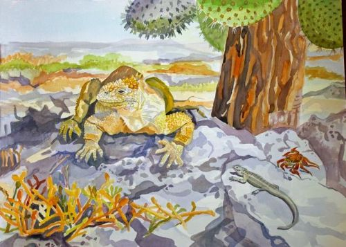 Janet Waters:<br><I>Iguana, Galapagos Islands</I>