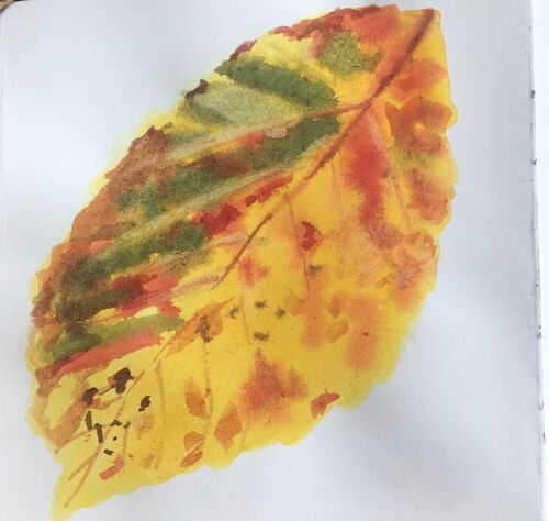 Janet Waters - Autumn Leaf Study 2