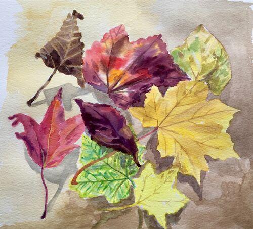 Janet Waters - Autumn Still Life 1