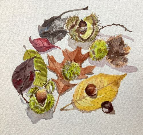 Janet Waters - Autumn Still Life 2