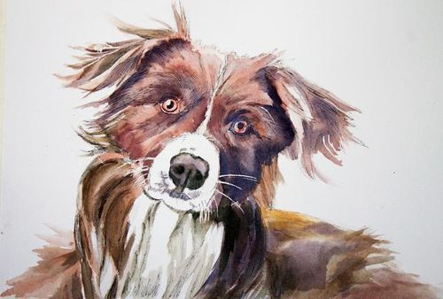 Janet Waters:<br><I>Border Collie Dog</I>