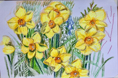 Janet Waters - Daffodils