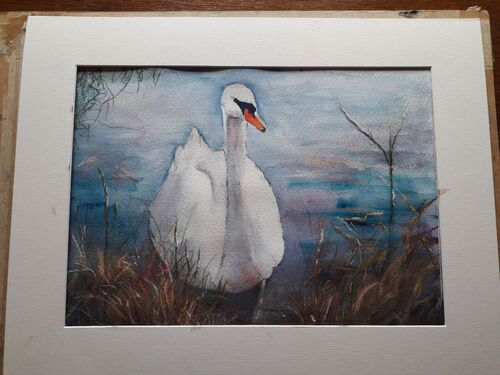 Sally Hayes - Swan - Part 2 (finished)