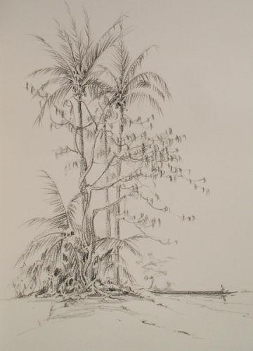 Djogue Island